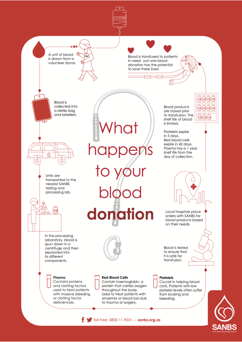 Donate Blood Process